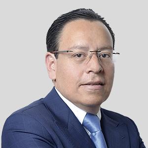 GABRIEL TRIGUEROS <br> BUSINESS MANAGER MEXICO